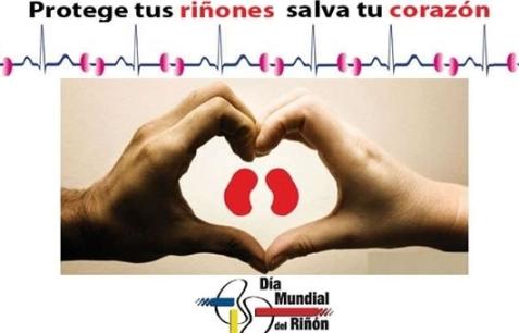 dia mundial del riñon
