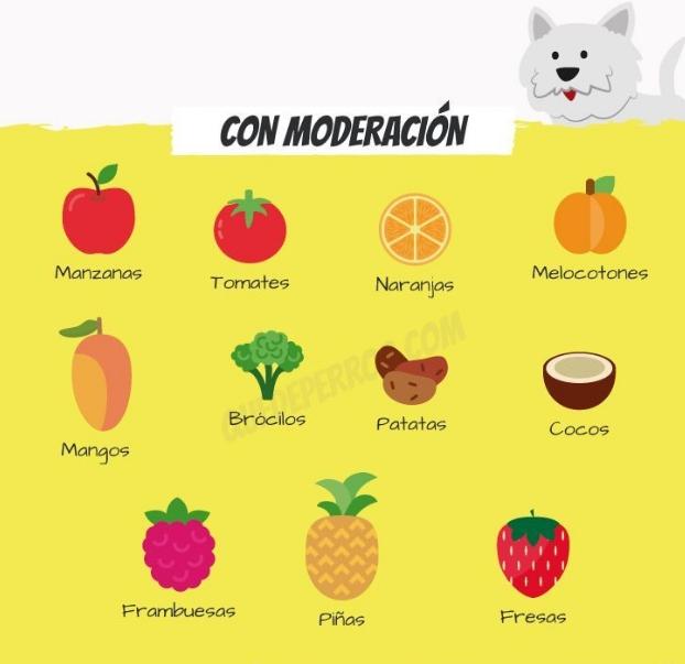 frutas-para-perros2