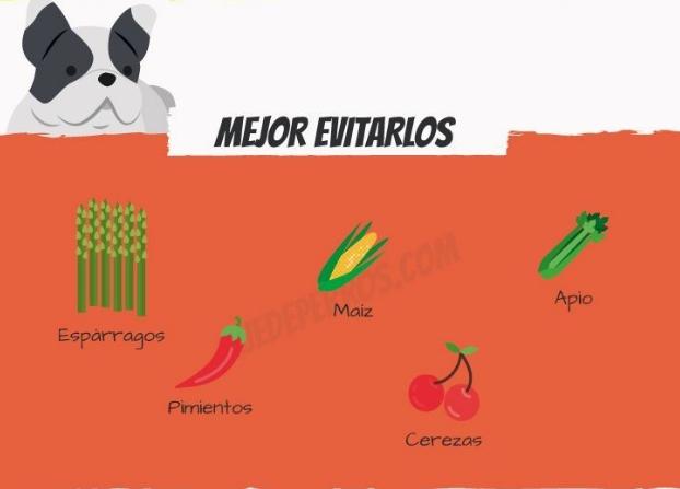 frutas-para-perros3